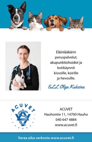 Eläinlääkäri Forssa